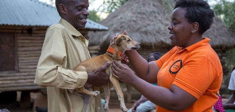 Global Elimination Of Dog-Mediated Human Rabies – The Time Is Now