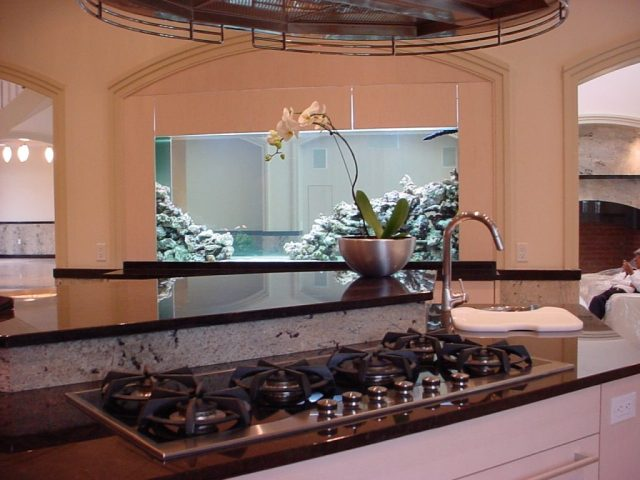 YOU WANT TO BUY OR INSTALL A CUSTOM AQUARIUM IN THE NEW JERSEY AREA