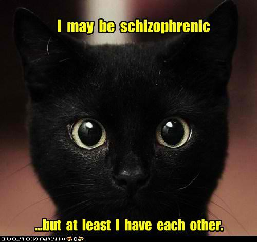 funny-pictures-i-may-be-schizophrenic