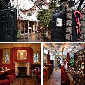 Meet me for Drinks at Cotton's in Shanghai's French Concession