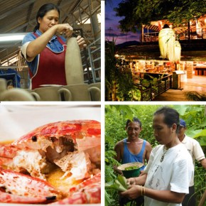 Environmental Sustainability in Asia – From Food to Architecture to Manufacturing