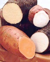 sweet potato and yam