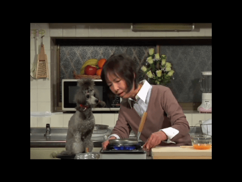 cooking with dog tv show