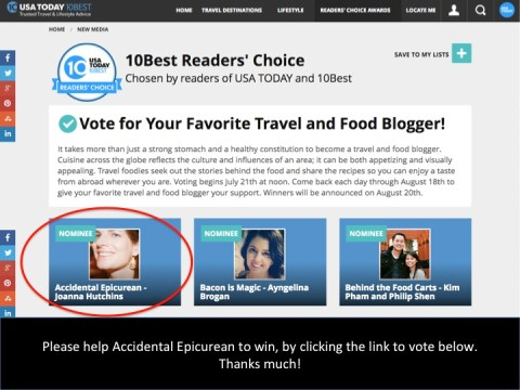 USA Today 10 Best Blogger awards