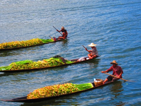 inle lake myanmar boats