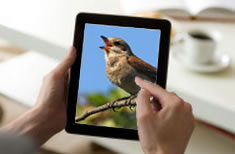 Inventory software customer: Bird Watcher's Digest