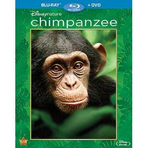 Chimpanzee Amaz