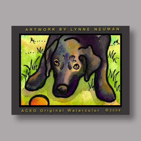 Signed ACEO *Black Lab Dog #2195* by Lynne Neuman