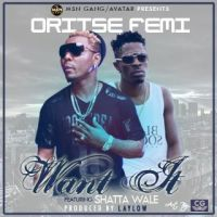 Oritse Femi ft. Shatta Wale - WANT IT [prod. by LayLow]