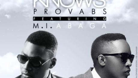 Provabs ft. M.I - HEAVEN KNOWS Artwork | AceWorldTeam.com