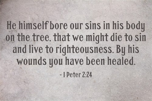 He-himself-bore-our-sins (1)