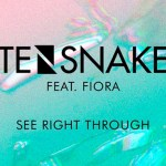 Tensnake - See Right Through