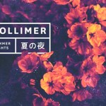 Pollimer - Summer Nights