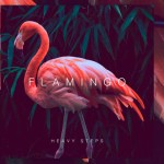 Flamingo - Heavy Steps EP