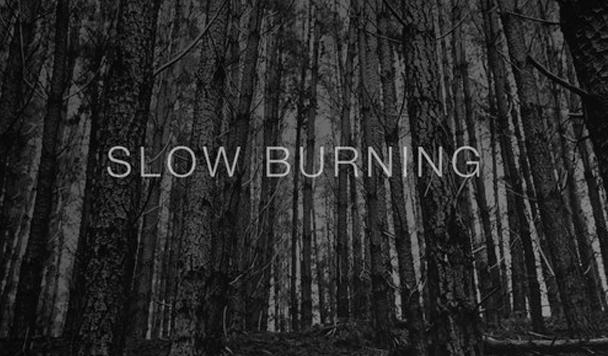 Flamingo - Slow Burning  [New Single] - acid stag
