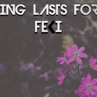 Feki: Nothing Lasts Forever  [New Single]