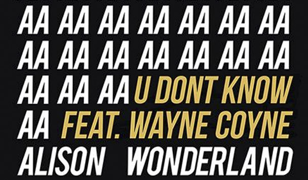 Alison Wonderland - U Don't Know (ft. Wayne Coyne) [New Single] - acid stag