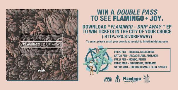 Flamingo Tour Competition - banner - acid stag