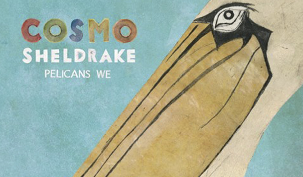 Cosmo Sheldrake - Pelicans We - acid stag