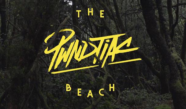 PWNDTIAC - The Beach - acid stag