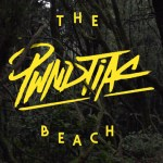 PWNDTIAC - The Beach - acid stag