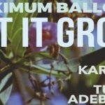 Maximum Balloon - Let It Grow (ft. Karen O & Tunde Adebimpe) - acid stag