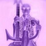 Prince - HARDROCKLOVER - acid stag