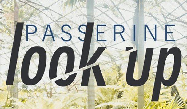 PASSERINE - Look Up - acid stag