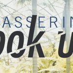 PASSERINE - Look Up - acid stag