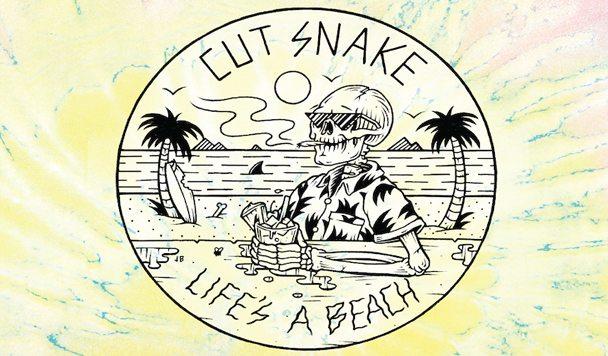 Cut Snake - Echo [New Single + Tour] - acid stag