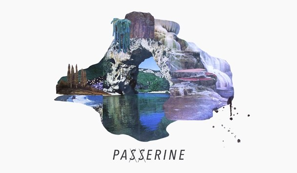 New Single by Passerine - White Shadows and Grey Noise - acid stag