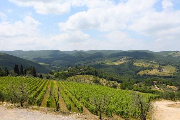 Fontodi_Tuscany_13