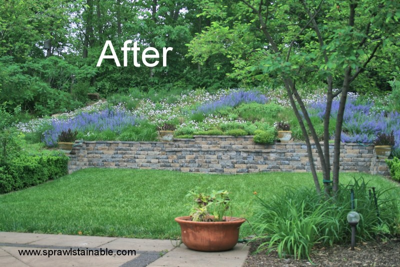 Large Of Images Of Landscaping Ideas