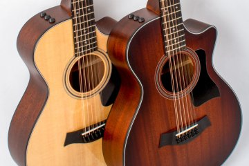 taylor_12strings
