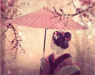 cerisiers en fleur au Japon hanami - 01