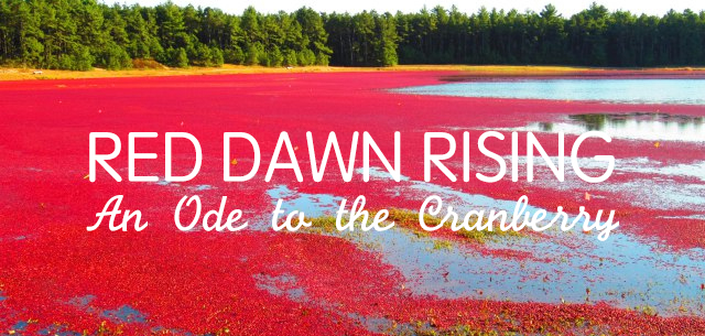 red-dawn-rising-ode-to-cranberry