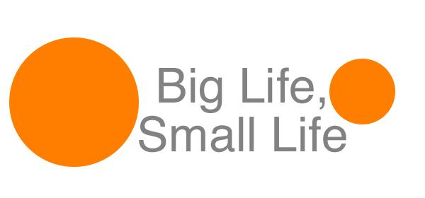 biglife-smalllife