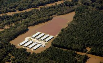 A flooded CAFO farm in North Carolina on October 11. | Photo courtesy of Rick Dove/Waterkeeper Alliance