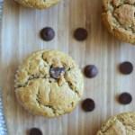Peanut Butter Banana Chocolate Chip Muffins: Muffin #14