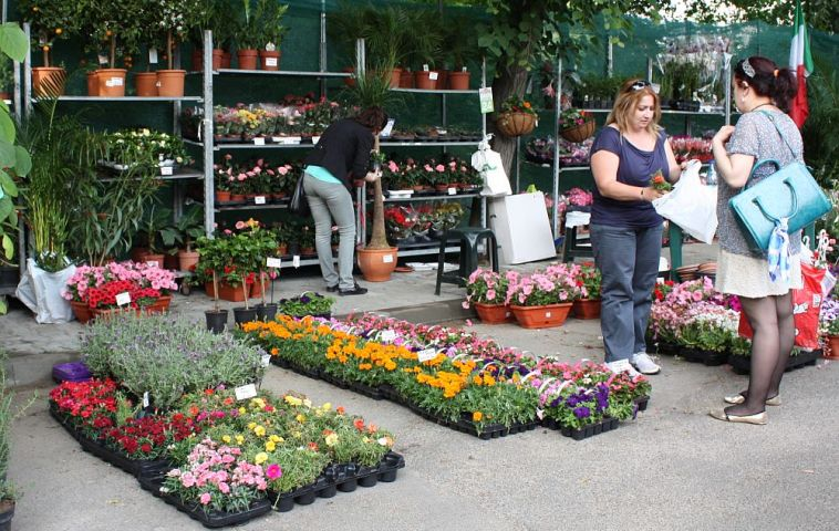 adelaparvu.com despre targul de plante, flori si peisagistica Hartus Florshow 2014 (13)