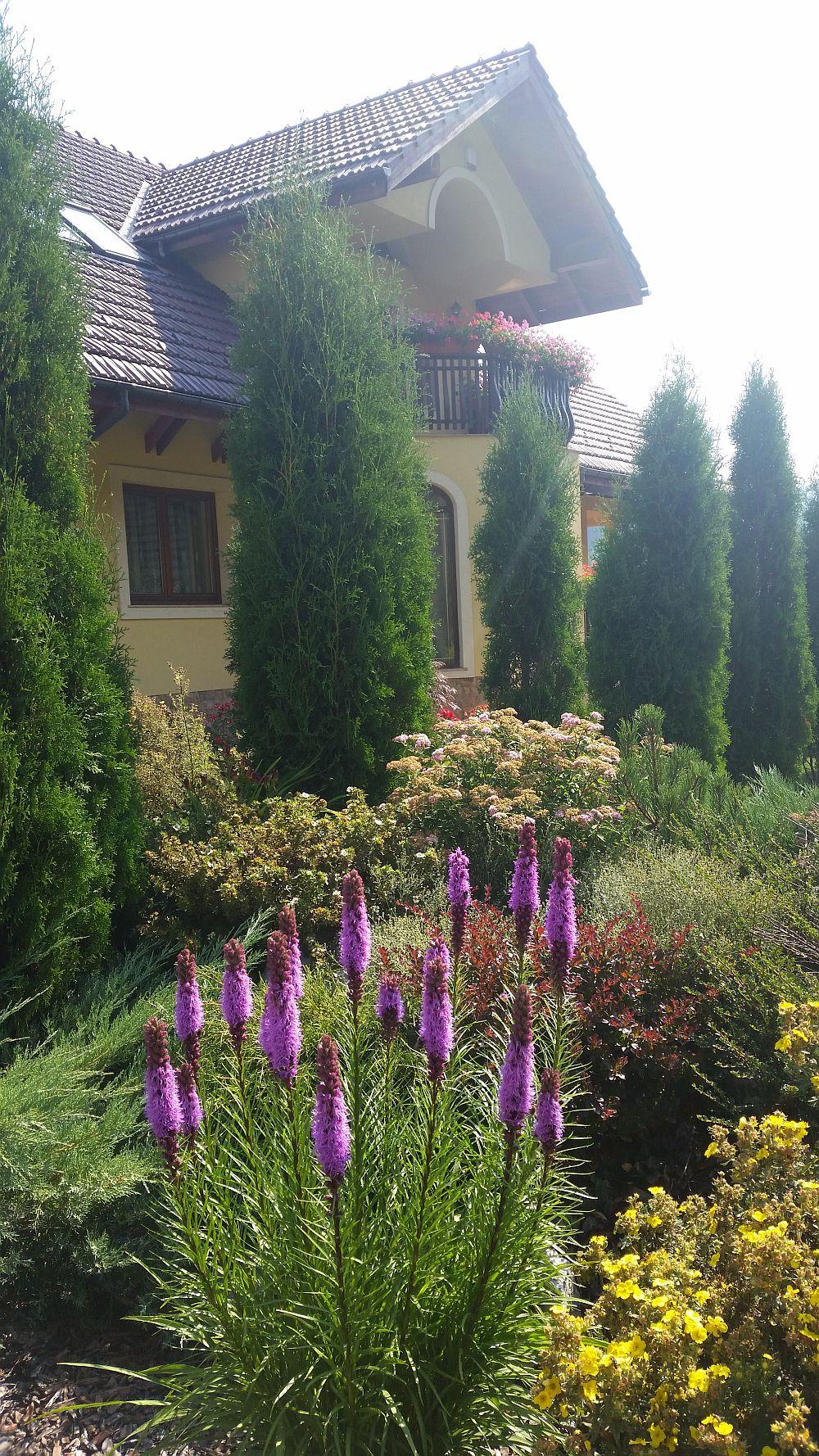 adelaparvu.com despre gradina in Bucovina, design Garden Green Campulung Moldovenesc, Foto Adela Parvu (9)
