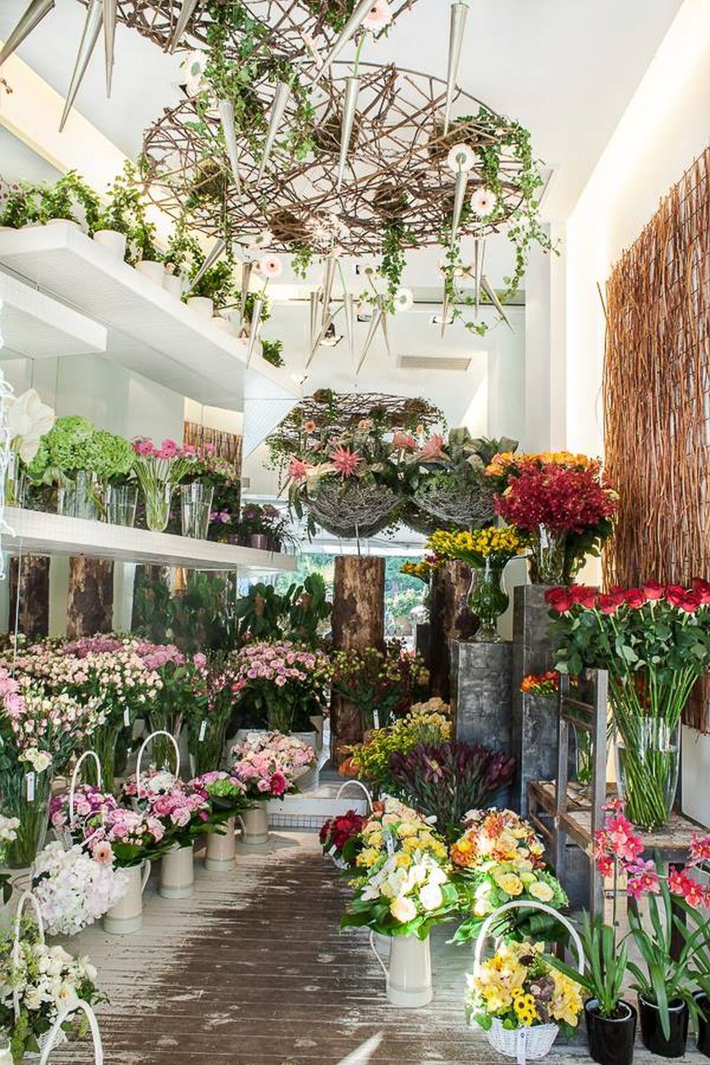 Florarie minunat amenajata autorii sunt arhitectul for Flower shop design layouts