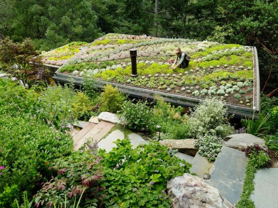 adelaparvu.com despre Mill Valley Cabins Foto Joe Fletcher (5)