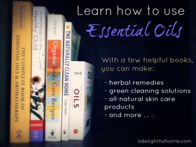 Learn how to use Essential Oils {helpful books} - A Delightful Home