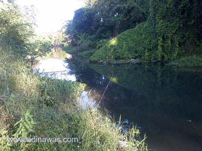 Tempat Mancing Sungai Berbah Di Sleman Jogjakarta