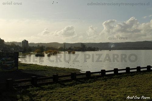 villarrica - contraluz - lago - polluelos