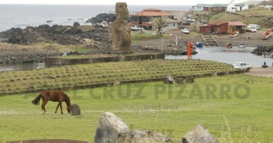 caballo - hanga piko - ahu riata - moai - hanga roa - ipc - isla de pascua