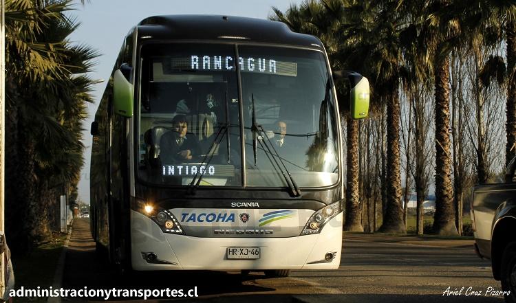 hrxj46 - neobus new road n10 380 - scania - tacoha - 160 - vanidosa - san vicente de tagua tagua