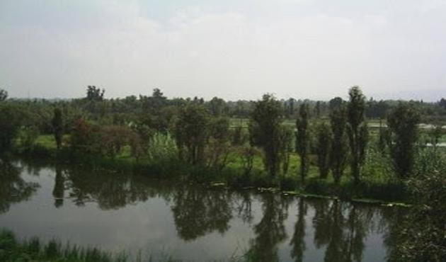 Humedal de Xochimilco protegido por jóvenes ecologistas (15:00 h)