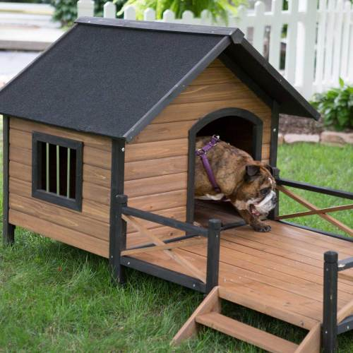 Medium Crop Of The Dog House
